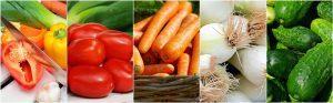 Ernährungsberatung & Ernährungstherapie